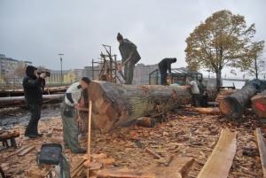 Fig. 14: Ole Martin, Gregorius og Egil starter kløvingen av en stor stamme som skal bli til planker. Her er det viktig hele tiden å opprettholde et stort trykk fra enden. (Foto: Thomas Finderup)