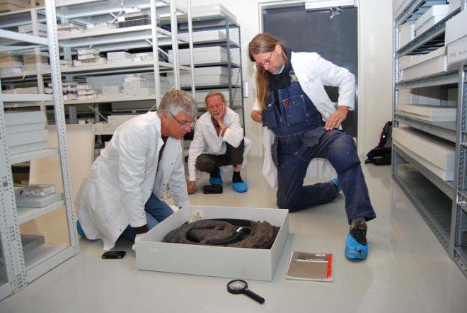 Fig. 2: Professor Jan Bill (til venstre), treskjærer Geir Dalene og båtbygger Geir Røvik studerer det originale dragehodet. (Foto: Thomas Finderup)